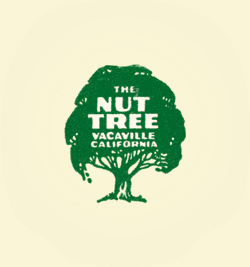 a picture of a nut tree
